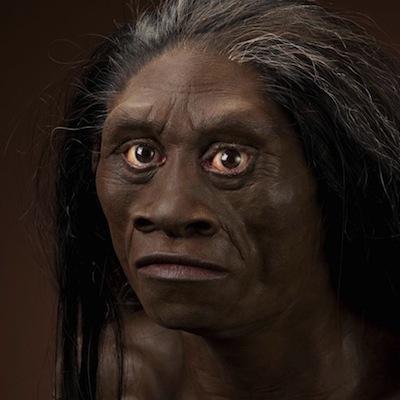 1588272631_floresiensis.jpg