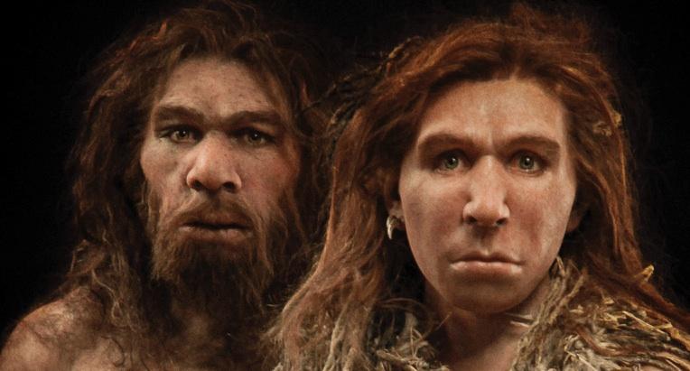 1588275515_neanderthal.jpg